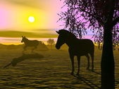 Zebras by sunset - 3D render — Foto Stock
