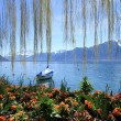 Springtime at Geneva lake, Montreux, Switzerland — Stockfoto