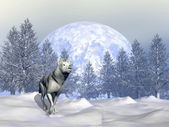 Wolf in winter - 3D render — Stock Photo