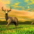 Bucks in ntaure - 3D render — Stock Photo