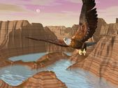 Eagle upon canyons - 3D render — Stock Photo