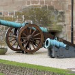 Canons in front of castle, Morges, Switzerland — Stock Photo