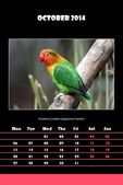 Bird calendar for 2014 - october — Stock Photo