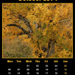 Nature calendar for 2014 - october — Stock Photo #30561399