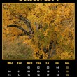 Nature calendar for 2014 - october — Stock Photo