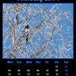 Nature calendar for 2014 - february — Stock Photo