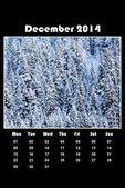 Nature calendar for 2014 - december — Stock Photo