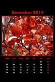 Nature calendar for 2014 - november — Stock Photo