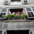 Old flowery window — Stockfoto