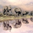 Elephants and water - 3D render — Stock Photo