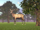 Elk in the woods - 3D render — Stock Photo