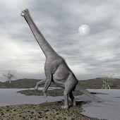 Brachiosaurus dinosaurs - 3D render — Stock Photo