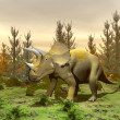 Triceratops dinosaur - 3D render — Stock Photo