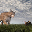 Bobcat hunting mouse - 3D render — Stock Photo