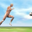 Muscles of soccer player - 3D render — Stock Photo #38741321