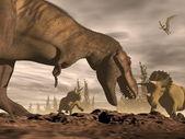 W triceratops - 3d renderowania tyrannosaurus — Zdjęcie stockowe