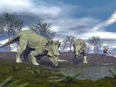 Styracosaurus dinosaurs going to water - 3D render — Stock Photo