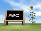 Sunflower blackboard saying thank you in french - 3D render — Stock Photo
