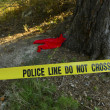 Stock Photo: Crime scene: Police line do not cross tape