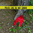 Crime scene: Police line do not cross tape - Stock Photo