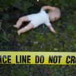 Crime scene in the forest with doll — Stock Photo