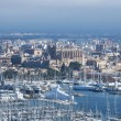 Palma de Mallorca Port: Harbour and cathedral  — Stock Photo