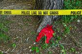 Crime scene: Police line do not cross tape — Stock Photo