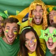 Brazilian sport soccer fans amazed — Stock Photo #41020827