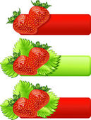 Strawberry — Stockvektor