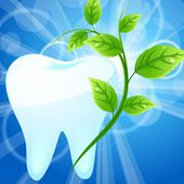 Tooth with a mint branch — Stock Vector