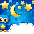 owl and a starry sky — Stock Vector