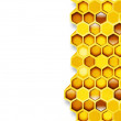 Honeycomb — Stock Photo #39613921