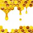 Honeycomb — Stock Photo #39613931