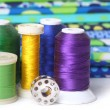 Foto Stock: Quilting Thread With Fabric and Copy Space