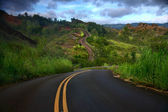 Artistic Curved Road on the Island of Kauai — Stock Photo