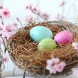 Stock Photo: Easter Holiday Themed Still Life Scene in Natural Light