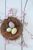Easter Holiday Themed Still Life Scene in Natural Light — Stock Photo