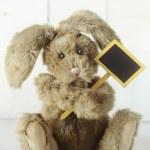 Teddy Bear Like Home Made Bunny Rabbit on Wooden White Backgroun — Stock Photo #41583857
