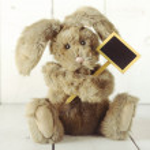 Teddy Bear Like Home Made Bunny Rabbit on Wooden White Backgroun — Stock Photo #41583913
