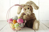 Easter Bunny Themed Holiday Occasion Image — Stock Photo