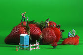 Construction Workers in Conceptual Food Imagery With Strawberrie — Stock Photo