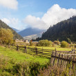 Stock Photo: Autumn in the Carpathian Mountains