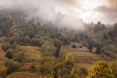 Autumn in the Carpathian Mountains — Stock Photo