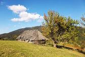 Autumn in the Carpathian Mountains — Stock Photo