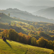 Beautiful autumn landscape - Stok fotoğraf
