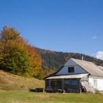 Autumn landscape in the Carpathian mountains — Stock Photo #16969875