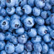 Stock Photo: Blueberries macro photo