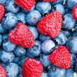 Blueberry with raspberry macro photo — Stockfoto