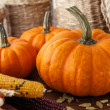 Fresh beautiful pumpkins — Stock Photo