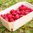Fresh raspberries — Stock Photo #33814997